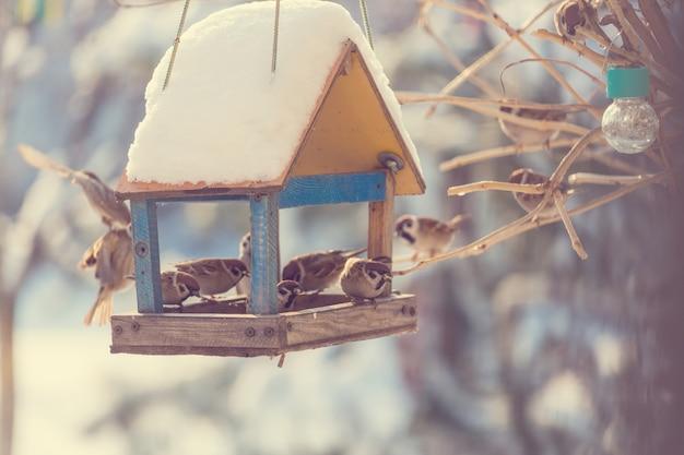 鳥すずめ飼い葉桶