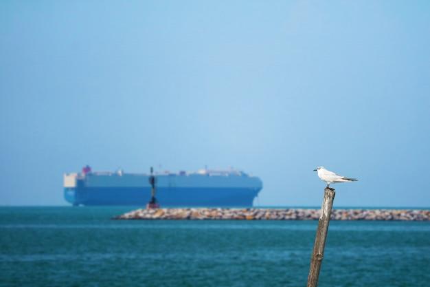 Птица стоит на бамбуке на море и размытия стоянка грузового корабля
