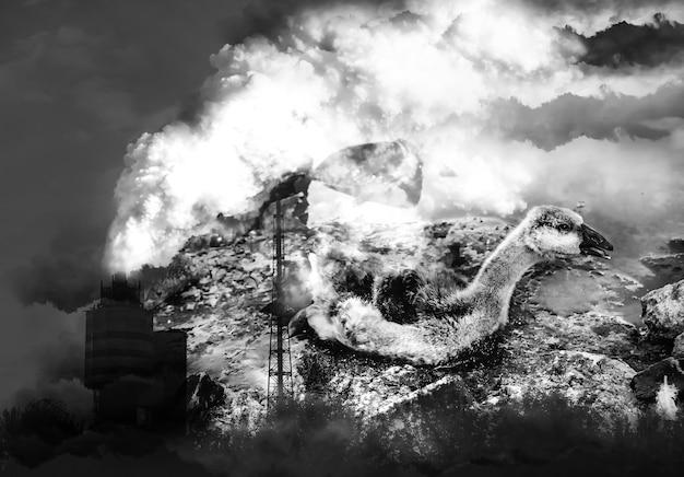 鳥はタールで汚染された水に閉じ込められました。背景のファクトリーパイプ。産業廃棄物で死にかけている動物。油で汚れた川や海。環境問題。