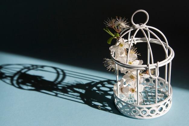 Птичья клетка с цветущей ветвью внутри и жесткими тенями. символ карантина и весны 2020 года.