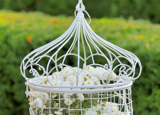 Клетка для птиц с цветами внутри, висящая на ветке в зеленом, свежем весеннем саду
