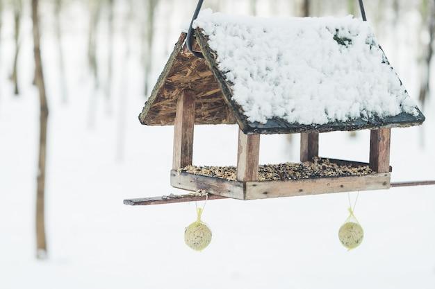 Скворечник и кормушка для птиц в зимнем парке
