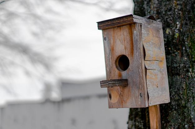 Birdhouse for birds fixed on a tree