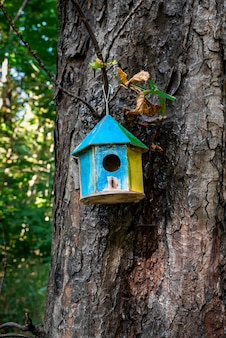 The birdhouse hangs on the tree during the daytime.