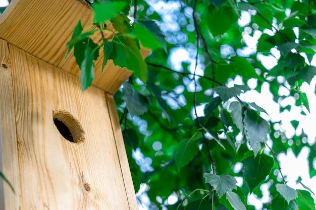 木のクローズアップの巣箱。鳥と環境への配慮。鳥の餌箱。鳥や動物のサポート。