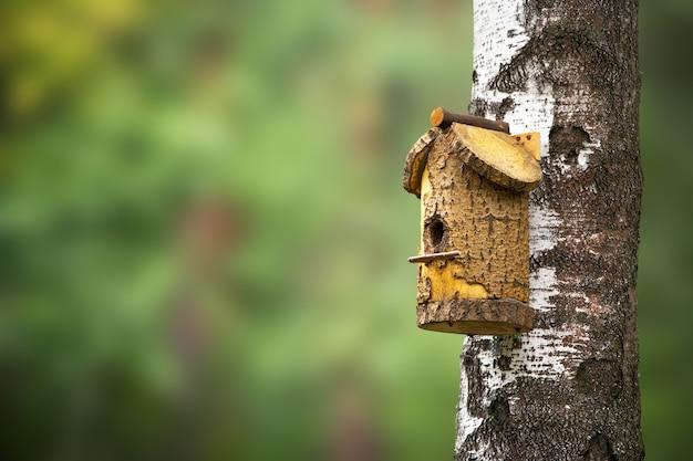 森の木の上の巣箱