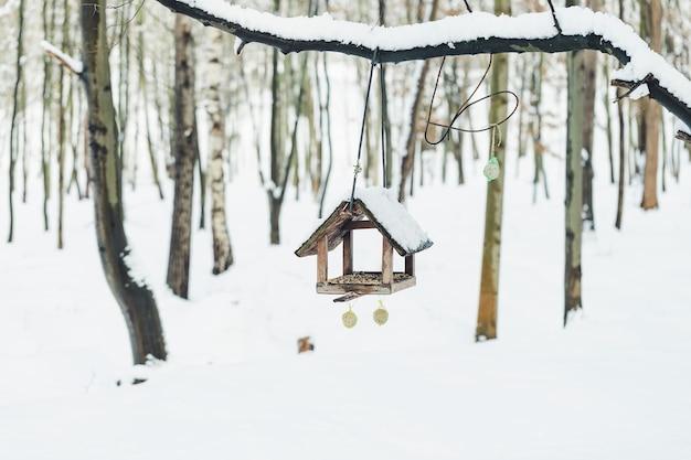 겨울 공원에서 지방 공 및 조류 피더와 버드 하우스. 공간을 복사하십시오. 겨울 개념에서 새 먹이