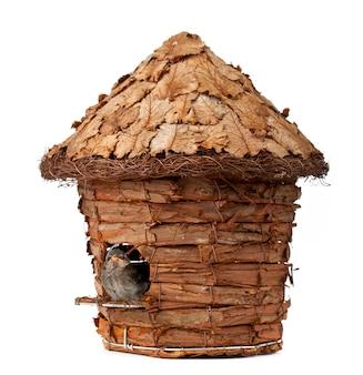 Birdhouse with little sparrow