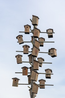 Birdhouses attached to a wooden pole