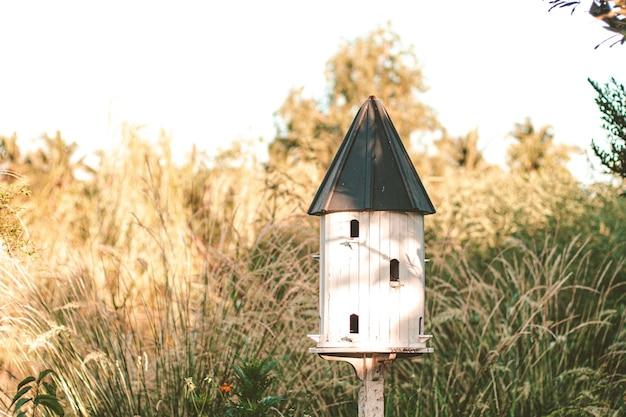 Birdhouses and bird feede