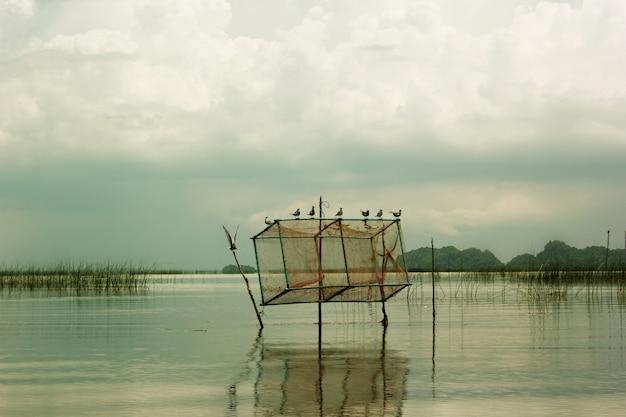 Птицы и рыбные ловушки в море