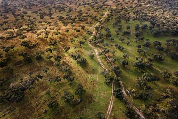 Birds-eye shot of dehesa de la luz landscape in spain