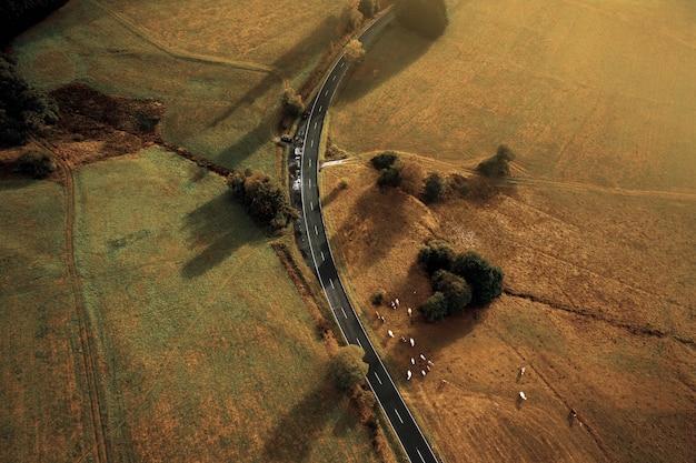 広大な黄色い野原と通りの鳥瞰図