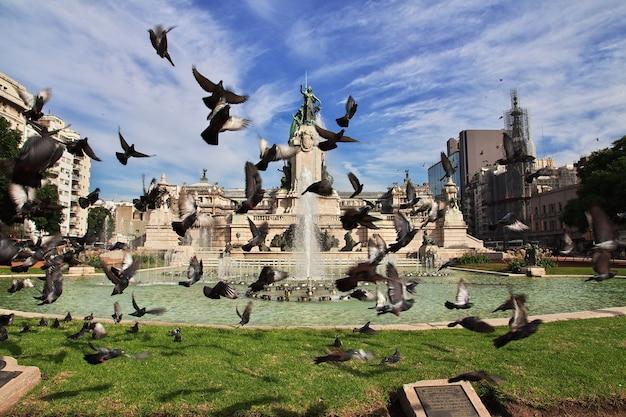 アルゼンチン、ブエノスアイレスでの鳥の飛行