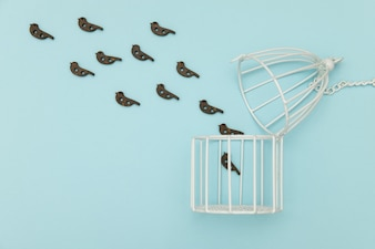 Birds fly out of the white cage on blue background
