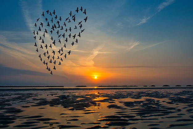 Birds silhouettes flying above the sea against sunrise in the form of heart