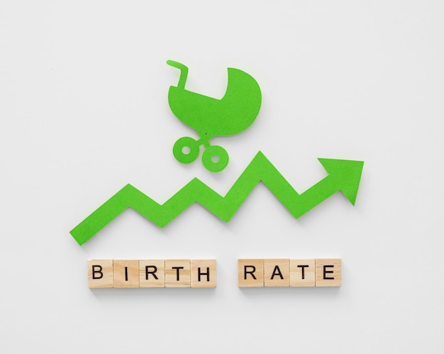 Концепция уровня рождаемости