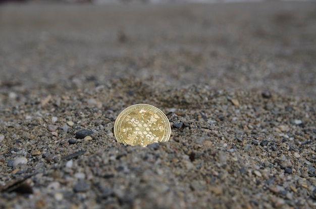 Биткойн ada токен монеты цифровая криптовалюта монета концепция скрытого сокровища