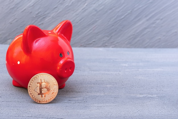 Bitcoin coin and red piggy bank on a gray background, close-up, copy space. cryptocurrency saving concept. new virtual electronic and digital money
