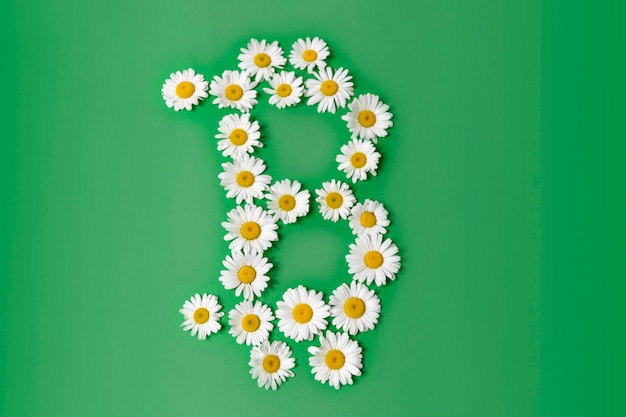 Bitcoin currency electronic scripto symbol of white daisies on a green background