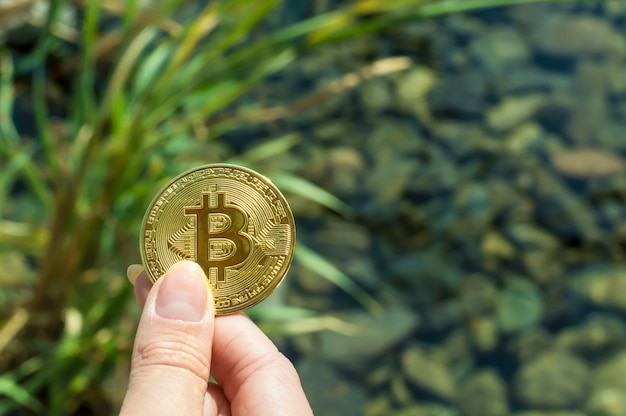 Bitcoin in a girl s hand against the background of a lake, grass, stones under water. prosperity, growth, financial success.