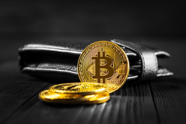 Bitcoin with dollar on purse isolated black