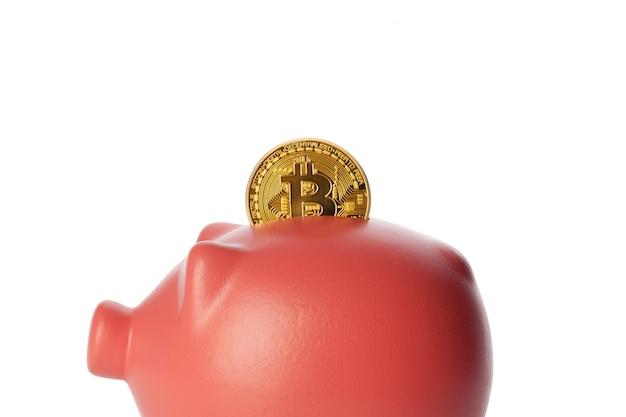 Bitcoins saving in a piggy bank