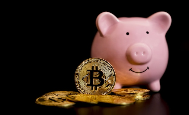 Bitcoins stand in front of pink piggybank risk and wealth can happen in trading cryptocurrency