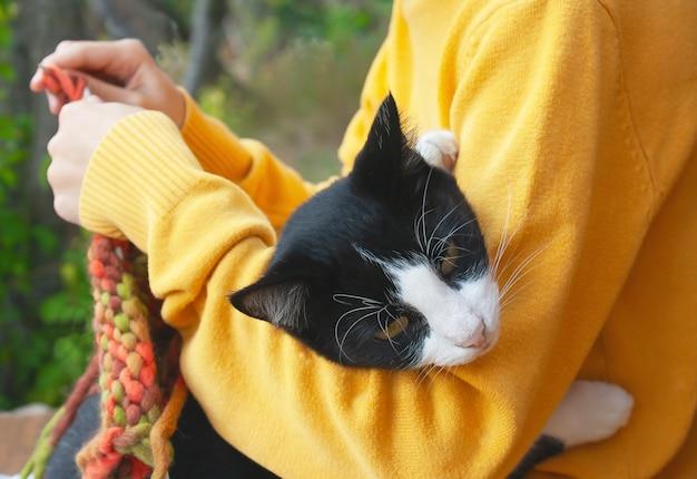 黒と白の猫は編み物をする女の子の手に横たわっています