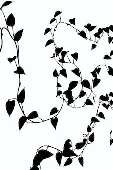 クリッピングパスと白い背景の上の多くの葉を持つつる植物の白黒イラスト
