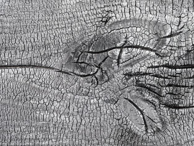 木の質感の表面に黒と白のパターン、美しい