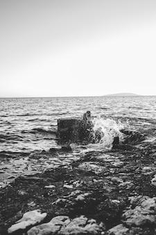 黒と白の海の波