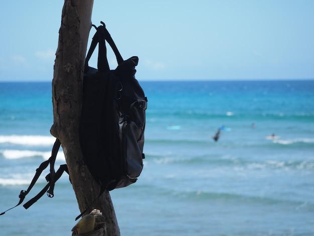 검은 배낭이 푸른 바다를 배경으로 나무에 매달려 있습니다.
