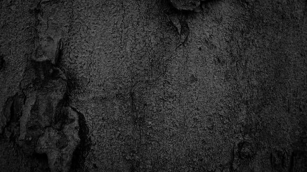 黒い樹皮の背景自然に美しい古い樹皮の質感