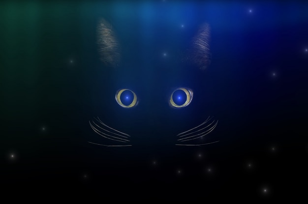 Black cat concept among starry sky, dark mysterious style. glowing cat eyes in the dark