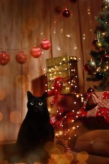 クリスマスセットでカメラを見ている黒猫