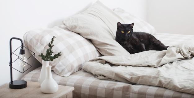 Черная кошка на кровати в спальне