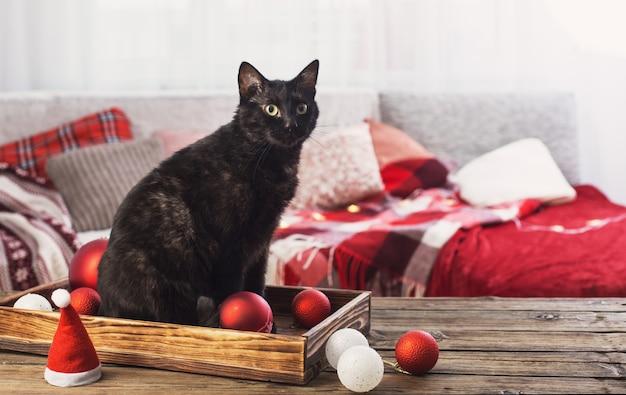 屋内の木製テーブルにクリスマスボールと黒猫