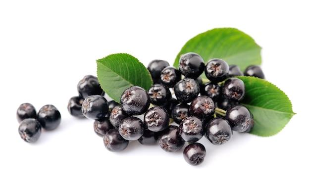 Черная арония с листьями заделывают. ягоды черноплодной рябины.