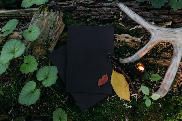 Black craft paper mockup black candle on background of forest magic nature