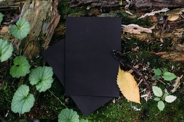 Black craft paper mockup template on the background of forest magic nature