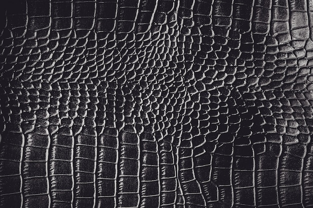Black crocodile leather texture background