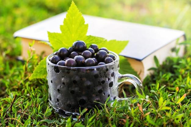 本の背景の草の透明なカップの黒スグリの果実_