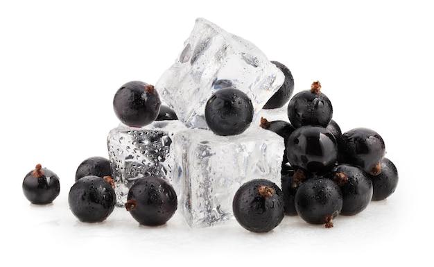 白い背景の上の角氷と黒スグリの果実