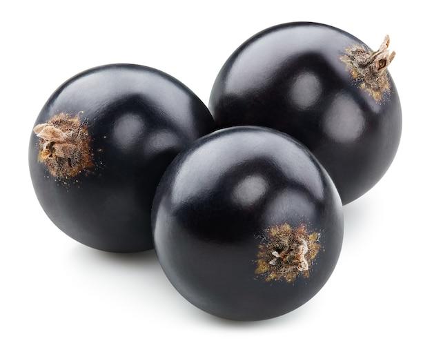 Обтравочный контур черной смородины. макро фото смородины. черная смородина, изолированные на белом фоне.