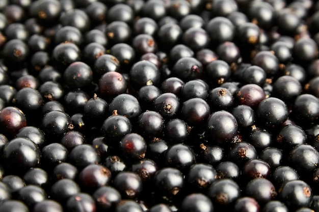 ブラックカラントの新鮮なベリーのクローズアップ、健康的なビーガンフードの背景、夏のビタミン食品