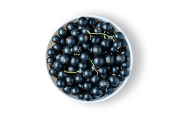 Black currant. ripe berries in a white plate. isolated on white. the berry contains a lot of vitamin c and is good for the immune system