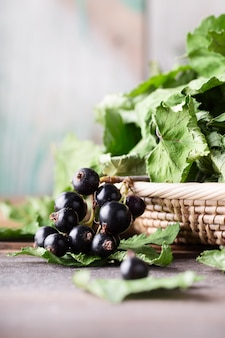 Black currant with green dried leaves on wooden background.