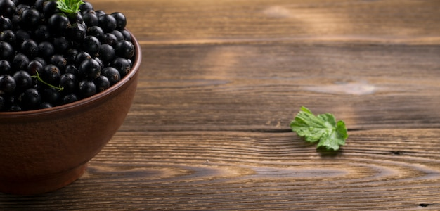 Black currant on wooden table with leaf sprig