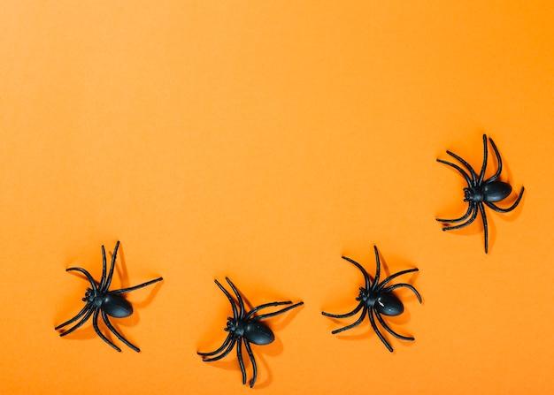 Черные декоративные пауки лежат полукругом